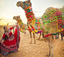 5 days rajasthan budget tour | Budget Rajasthan Tour Packages