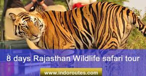 8 days Rajasthan Wildlife safari tour | Wildlife Safaris in Rajasthan