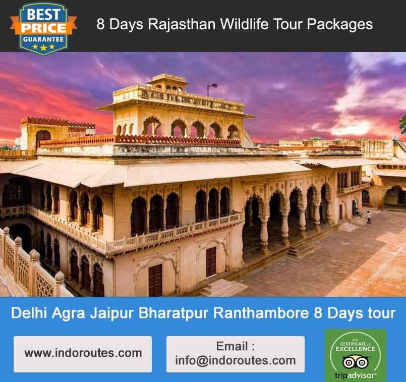 delhi agra jaipur bharatpur ranthambore 8 days tour