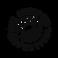 OSF Logo Final-Black.png