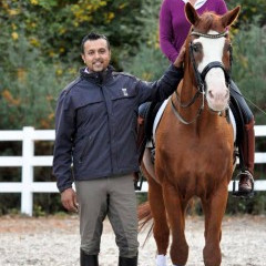 Dressage Daily article on Dave Thind at Equine Affaire