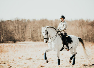 Horse Sport Magazine -                          The Harmonious Seat: Make the Move to Improve Your R