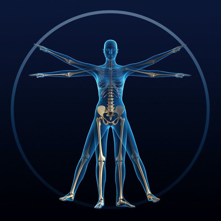vitruvian-woman-picture-id173761735.jpg