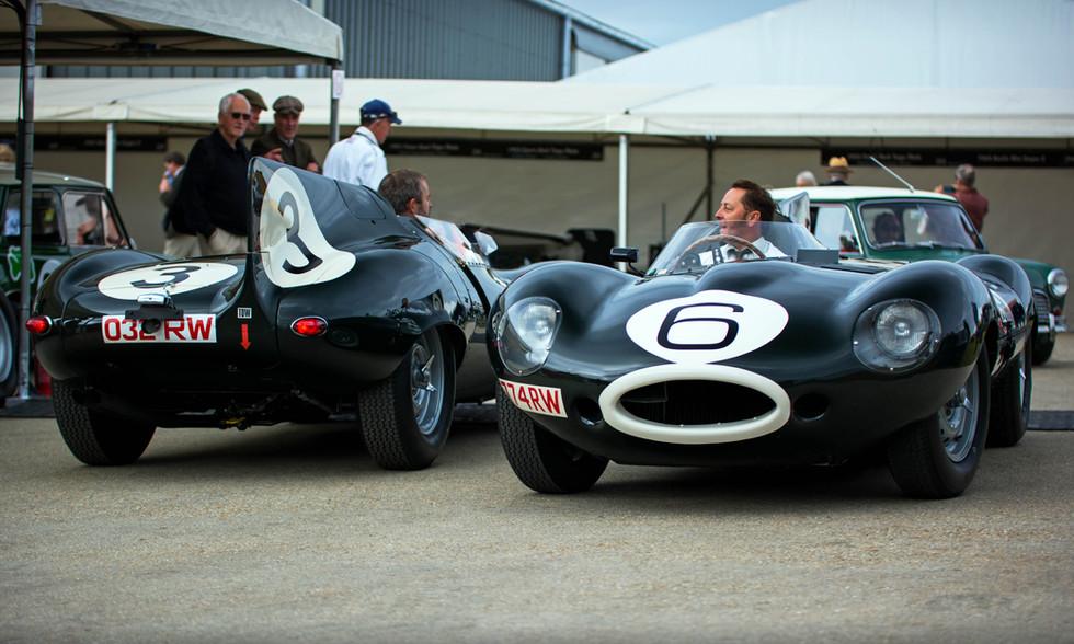 1955 Jaguar D-type Long Nose