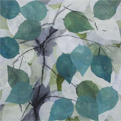 Rahim Mirza - Plant