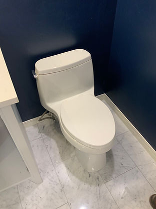 toilet repair or replacement.jpg