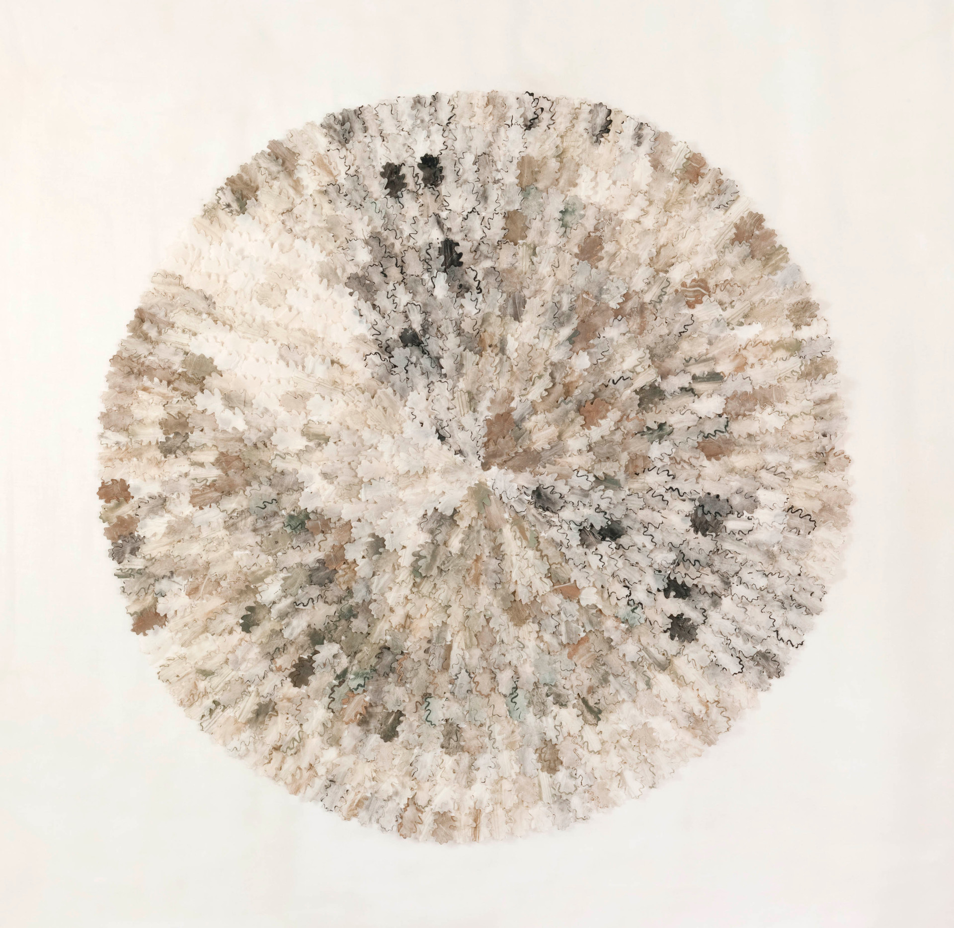 Winter oak/2012/Silk Paper Etching/122x122 cm