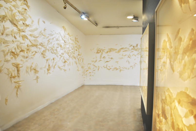 Entomological/2018/Silk Paper Pins/installation