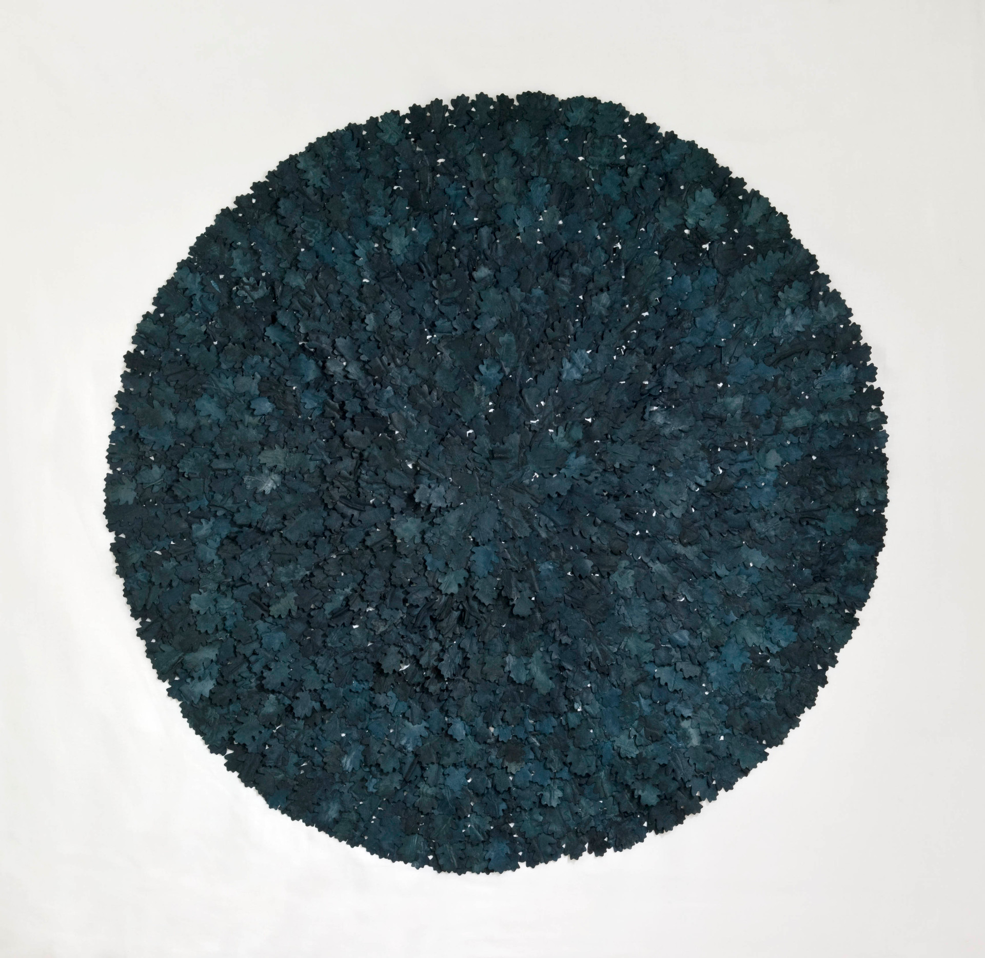 Black oak/2012/Silk Paper Ink/122x122 cm
