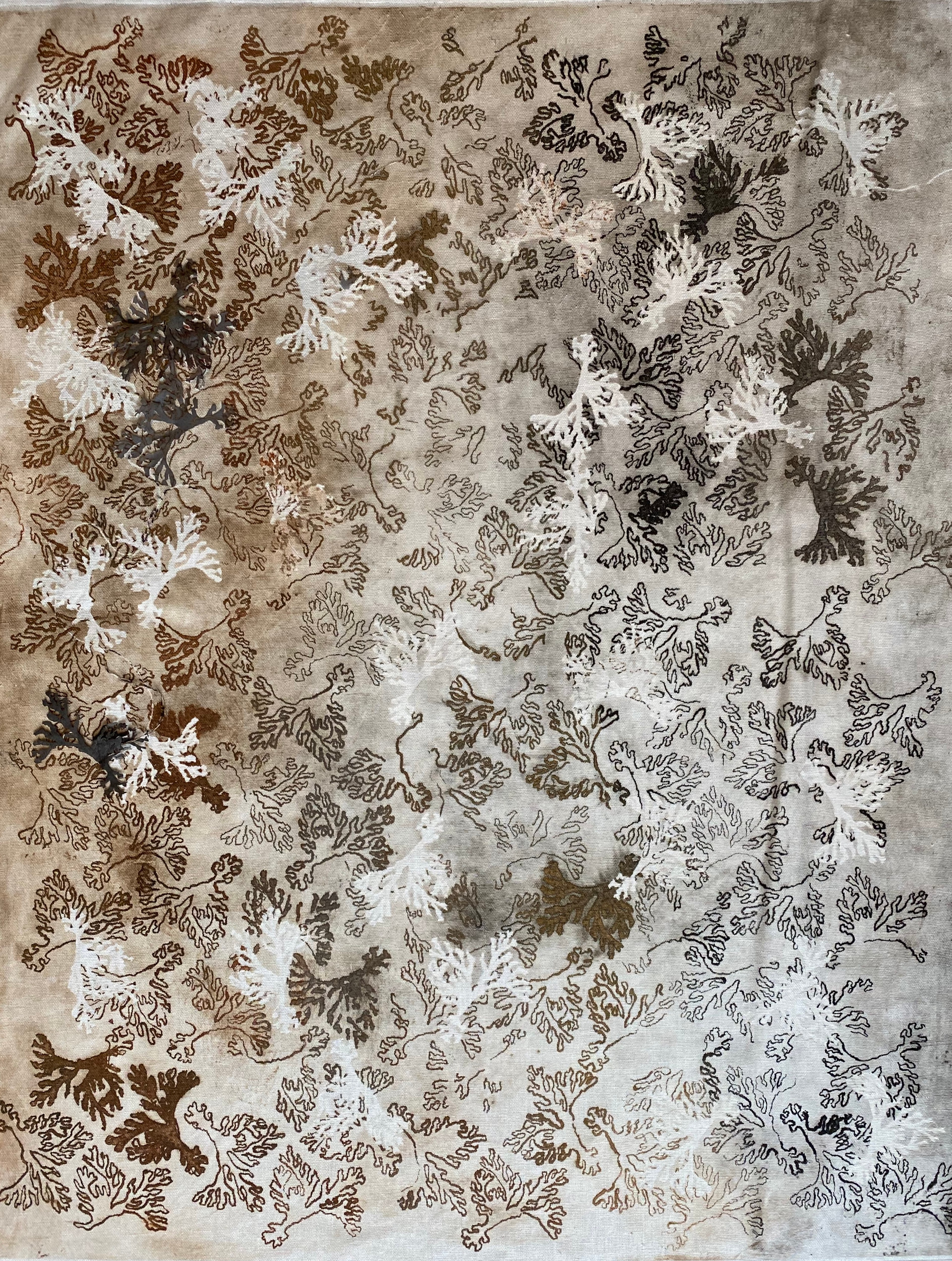 Etching Coral II/2020/Etching on paper/110x180 cm