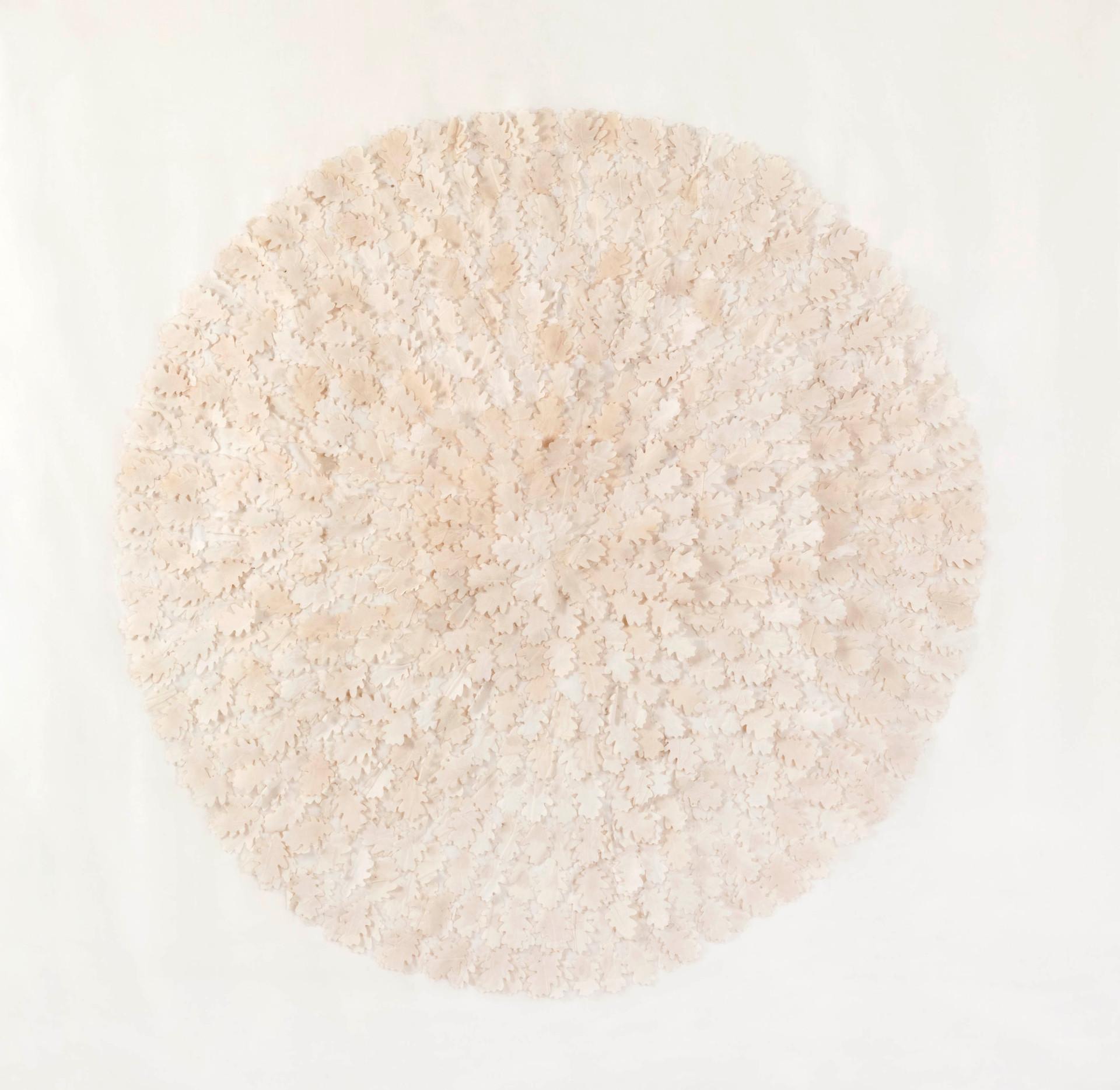 Natural oak/2011/Silk Paper/122x122 cm