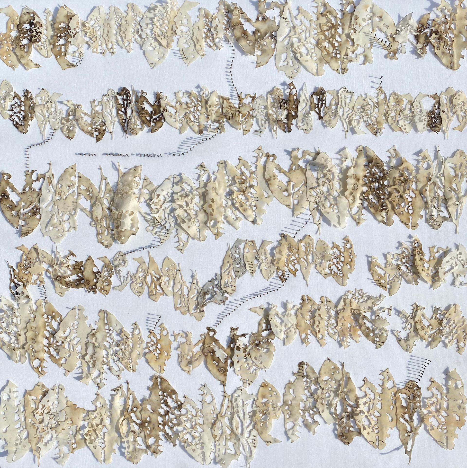 Bitten Leaves II/2020/Mixed techniques & entomological pins on linen/60x60 cm