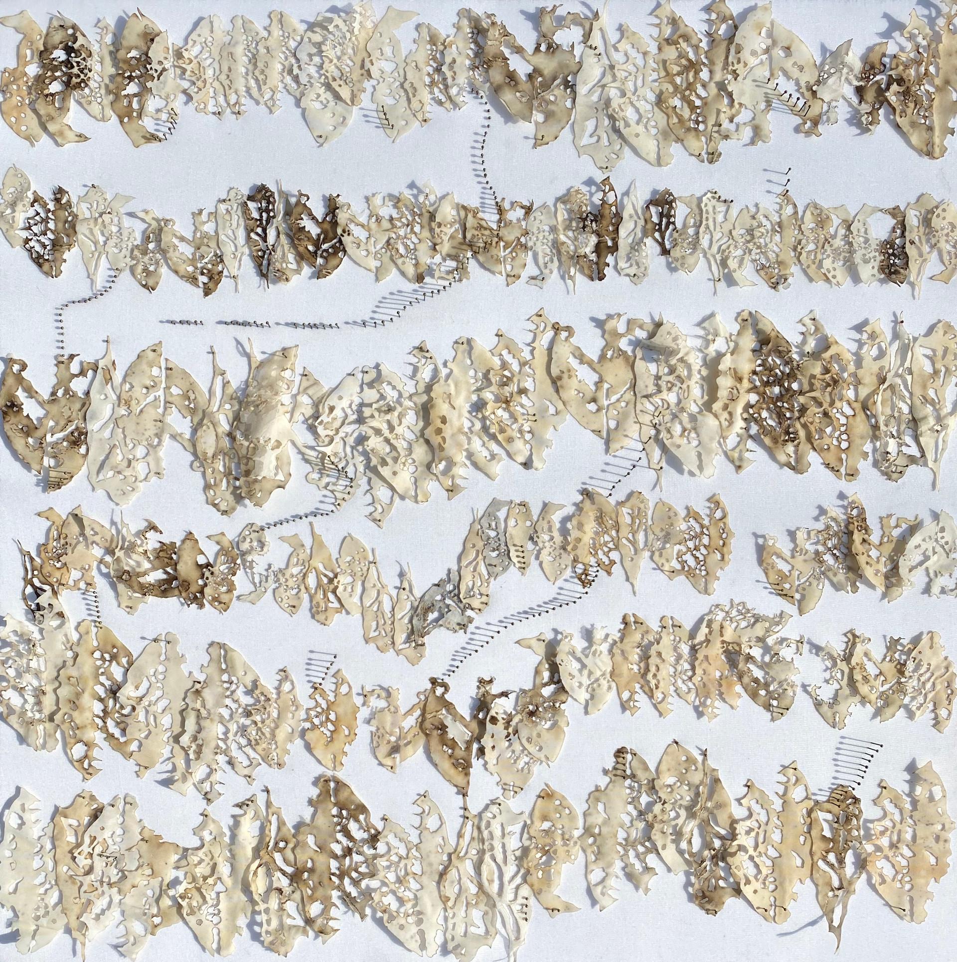 Bitten Leaves I/2020/Mixed techniques & entomological pins on linen/60x60 cm