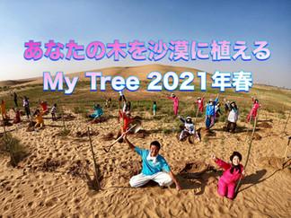 あなたの木を沙漠に植える「My Tree 2021年春」