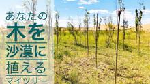 あなたの木を沙漠に植える「My Tree 2021年秋」/沙漠化が進む大地に「1000本(サッカー場1面分)」の緑を届けたい!