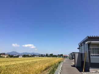 くまモンcafe2017.5.22