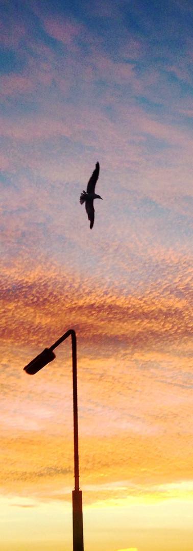 Sunrise on Breckfield Rd, Liverpool