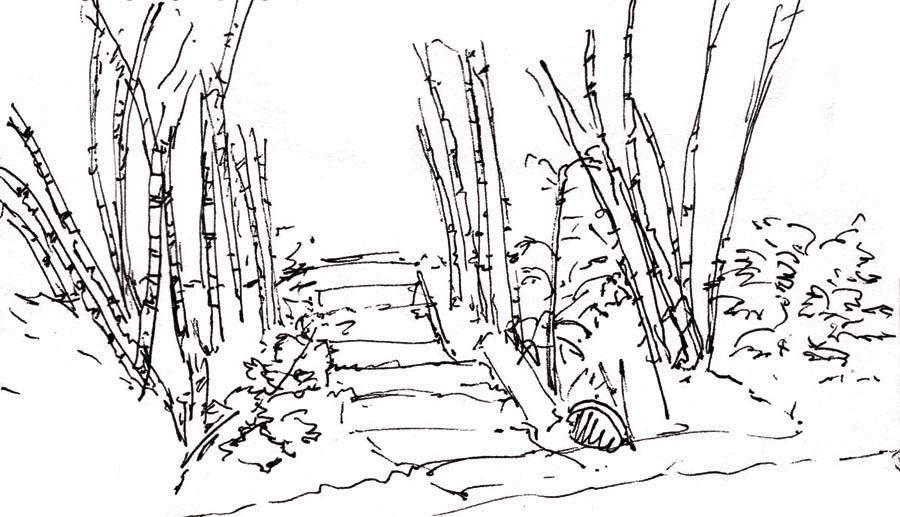 2.nature-bamboo.born2