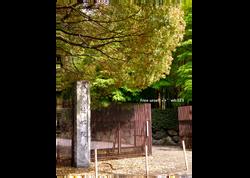 REVIVE❿ 京都 Kyoto apartment