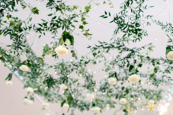 Kristen Weaver Photography