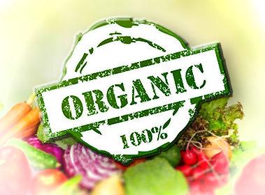 PlazaMagna_OrganicProduce_2.jpg