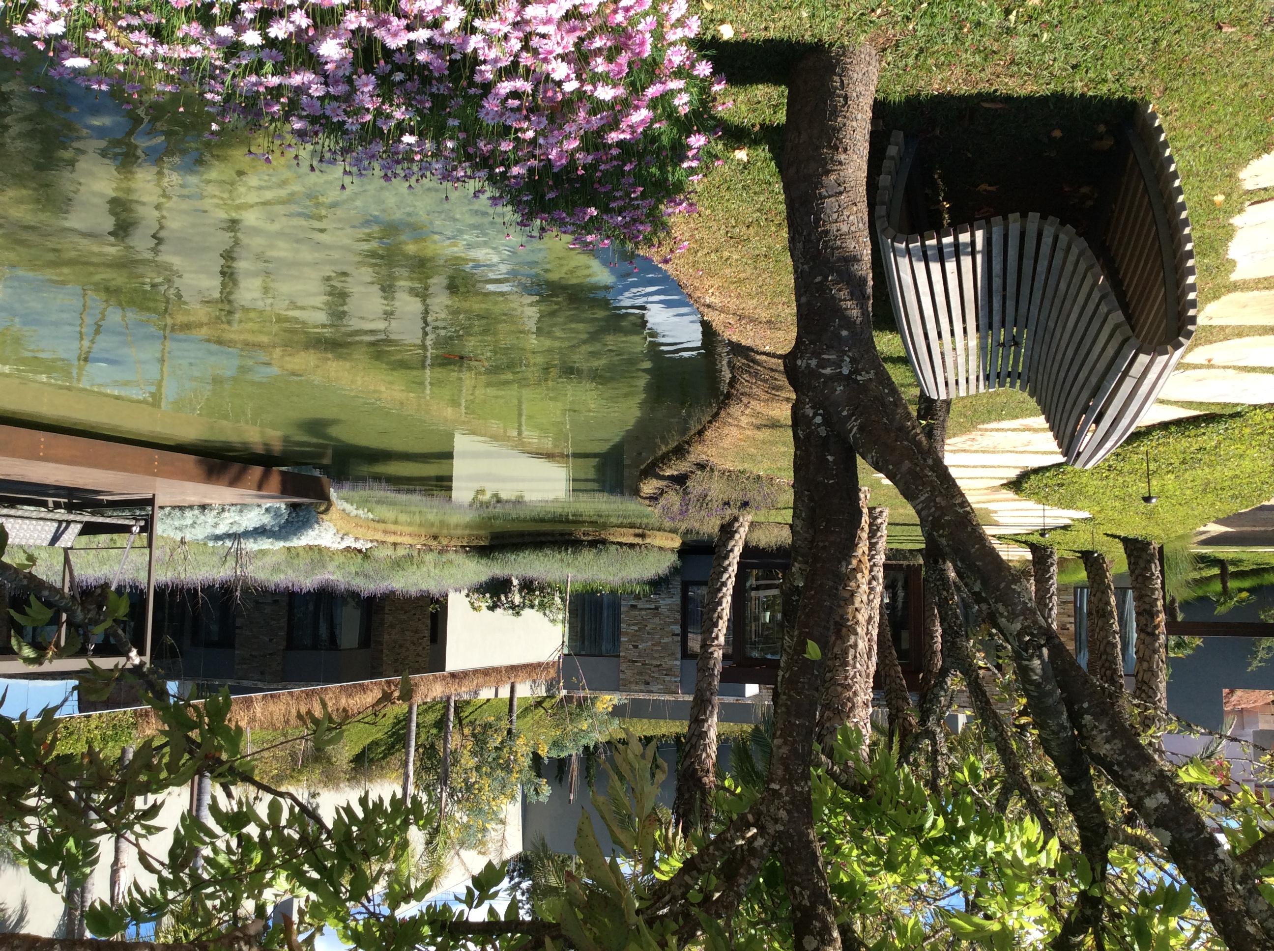 Lago_Orgânico_Deck
