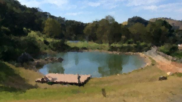Lago artificial para pescar.jpg