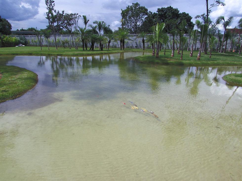 lago artificial em brasília.jpg
