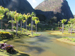 lago artificial carpas