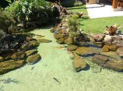 Lago Ornamental completo