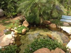lago ornamental climax