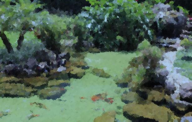 lago ornamental climax.jpg