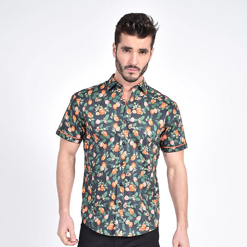 Tangelo Melody Print Fitted Shirt
