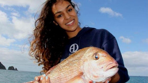 Fishing Workups for Snapper
