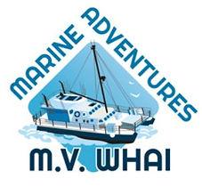 Marine adventures.JPG