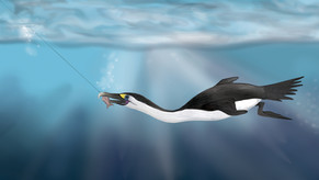 Avoiding specific seabirds