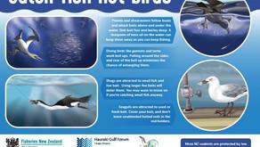 Poster - Bird Behaviour in the Hauraki Gulf