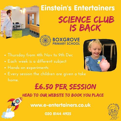 Boxgrove Science Club -