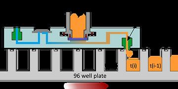 Figure3e.tif