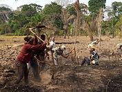 Empoderamiento a la mujer campos de agricultura en Baturi