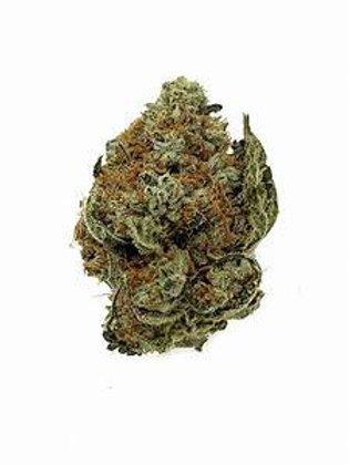 Candyland Peyote (19.05% Total Cannabinoids)