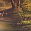 Thumbnail: Oil on Canvas Landscape with Cows
