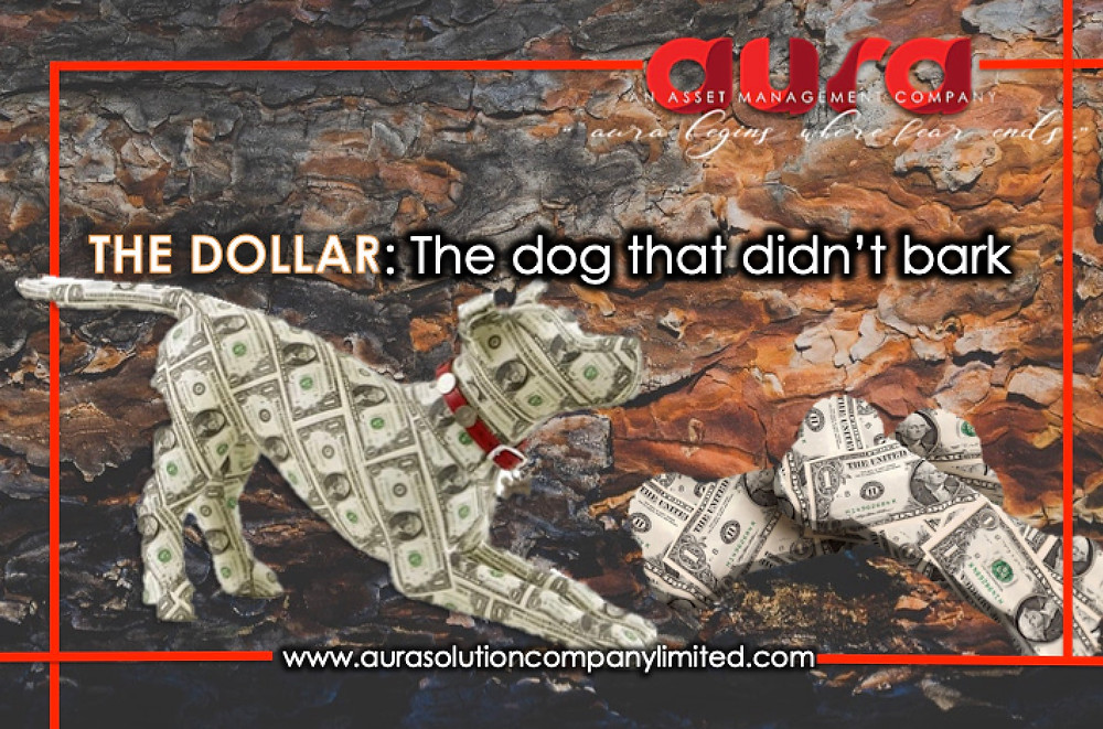 The dollar: The dog that didn't bark : Joseph Aidamouny : Aura Solution Company Limited