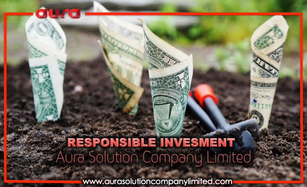 Responsible Investing : Aura Solution Company Limited