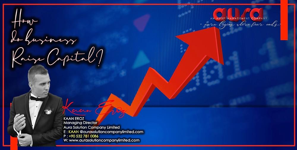 How Do Businesses Raise Capital? : Aura Solution Company Limited