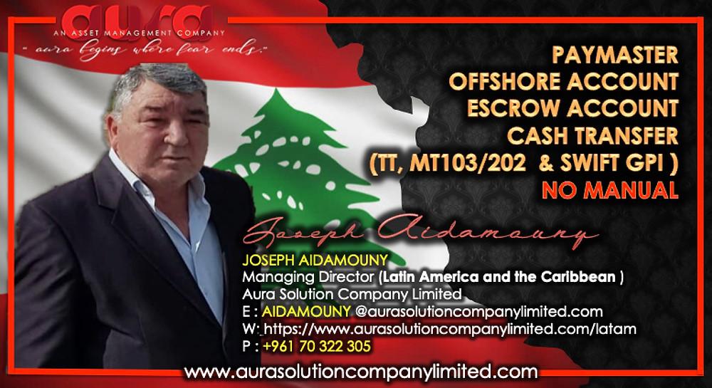 تراكب الأصول وإدارة الثروات: جوزيف عيداموني: شركة حلول هالة المحدودة