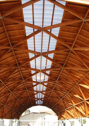 struttura-lamellare1.jpg
