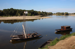 Loire_Combleux (2)
