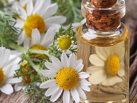 닥터유스 아로마롤온 천연성분 저먼 캐모마일 오일은요! The benefits of German chamomile essential oil is