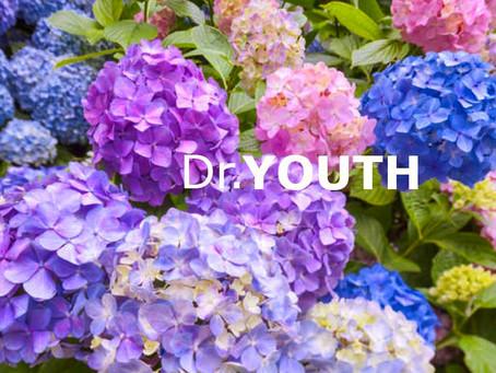 은은한 꽃향이 몸까지 편안하게 해주는 닥터유스 아로마롤온 천연오일